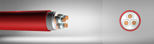 12/20 kV or 12.7/22 kV XLPE insulated double steel tape armoured, three core cables with copper conductor