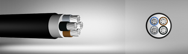 0.6/1 kV PVC Insulated, Multi-Core Cables With Aluminium Conductor