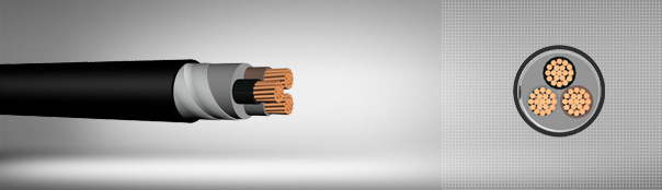 0.6/1 kV PVC Insulated, Double Steel Tape Armoured, Multi-Core Cables With Copper Conductor